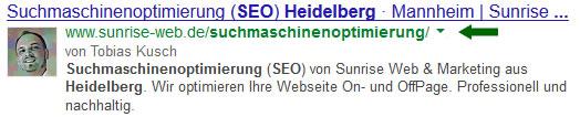 Snippet und Description bei der Suche nach Suchmaschinenoptimierung Heidelberg